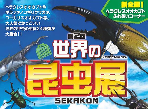【イベント終了のご報告】世界の昆虫展